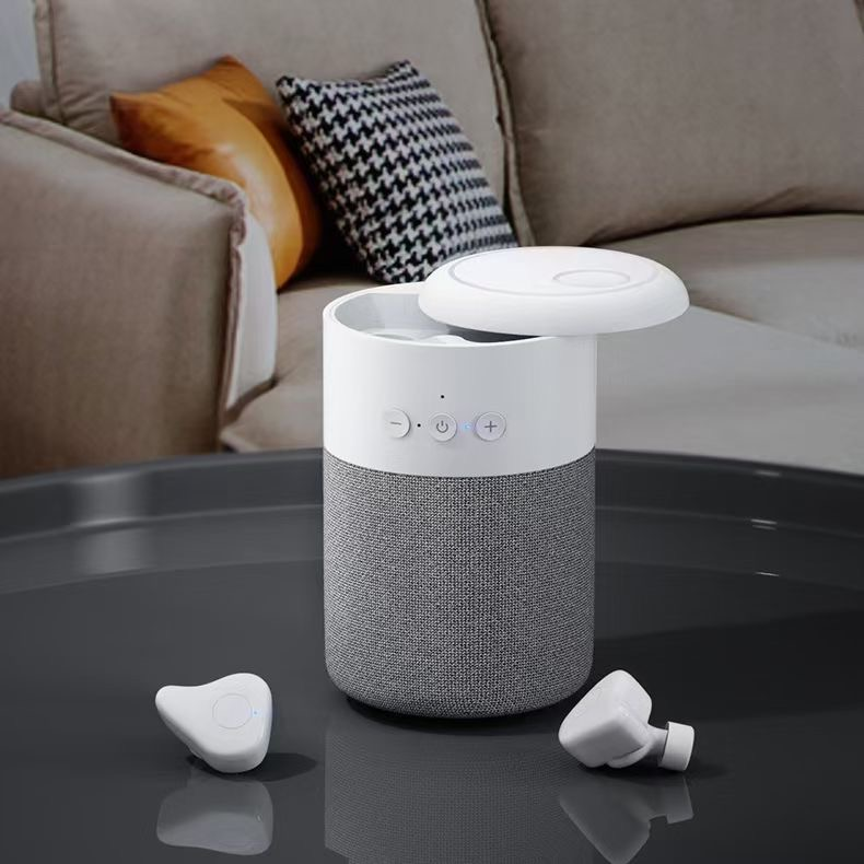 Bluetooth speakers and smart speakers, which one to choose?